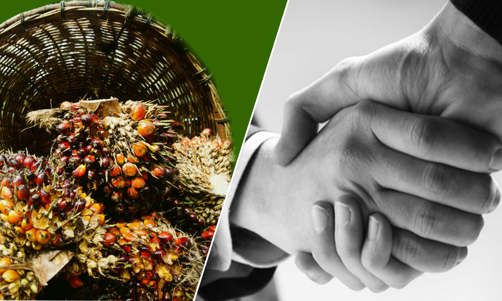 "EU-Indonesia Trade Tension: ""The Backlash on Palm Oil"""