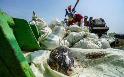 Nelayan Indonesia Menolak Rencana Pencabutan Subsidi Perikanan di WTO